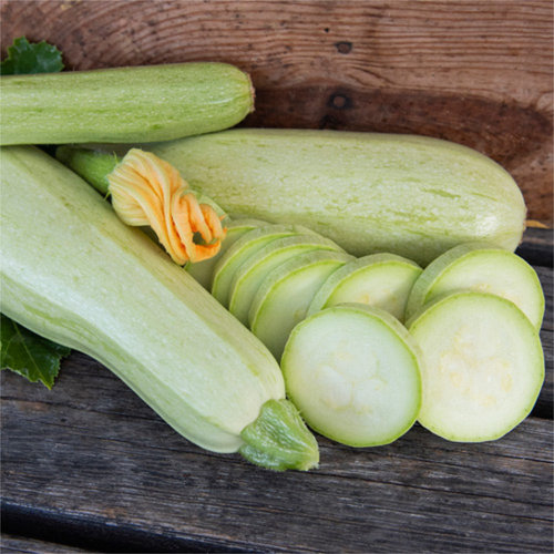 Squash 'Long White from Sicily'